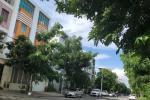 Bán nhà Góc 3 MT đường Số 21D, P. Bình Trị Đông B, 8 x 18m, 3.5 tấm, giá 19 tỷ. khu Tên Lửa